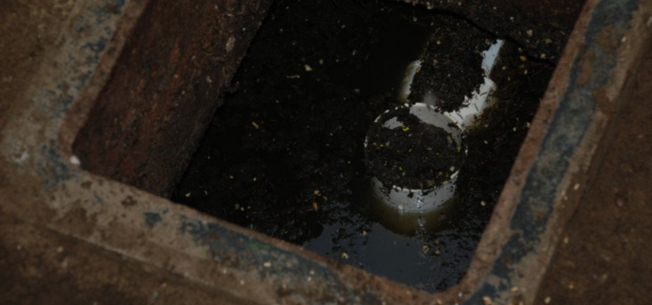 Plugged Effluent Filter Septic