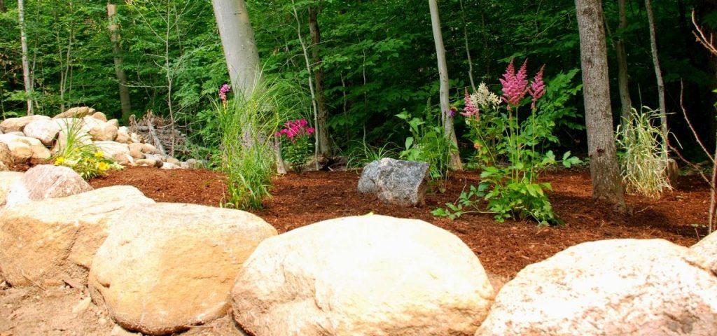 Landscaping Garden1